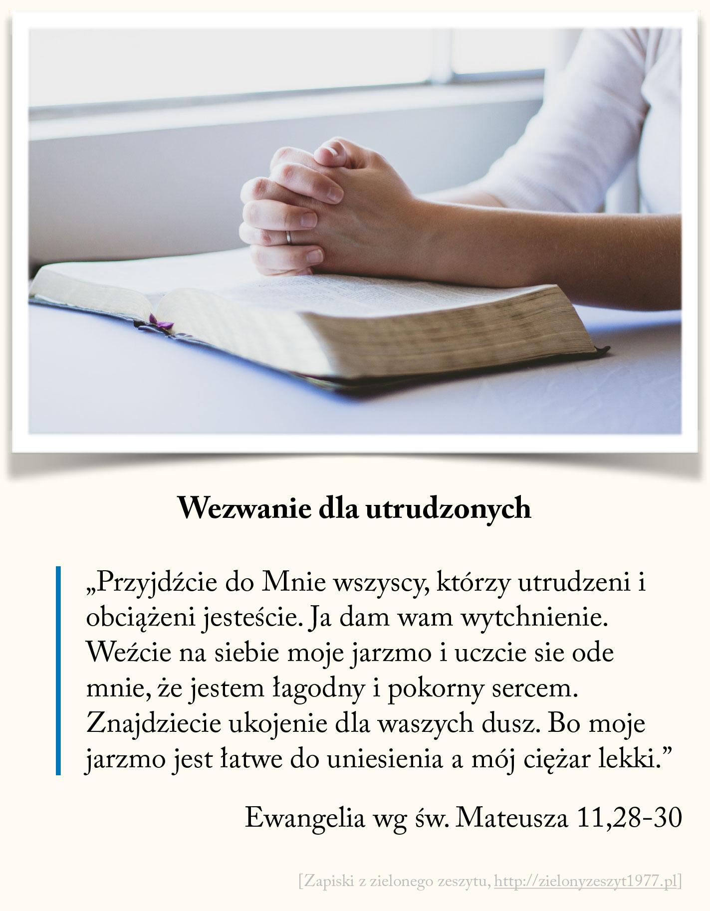 Wezwanie dla utrudzonych, Ewangelia wg św. Mateusza