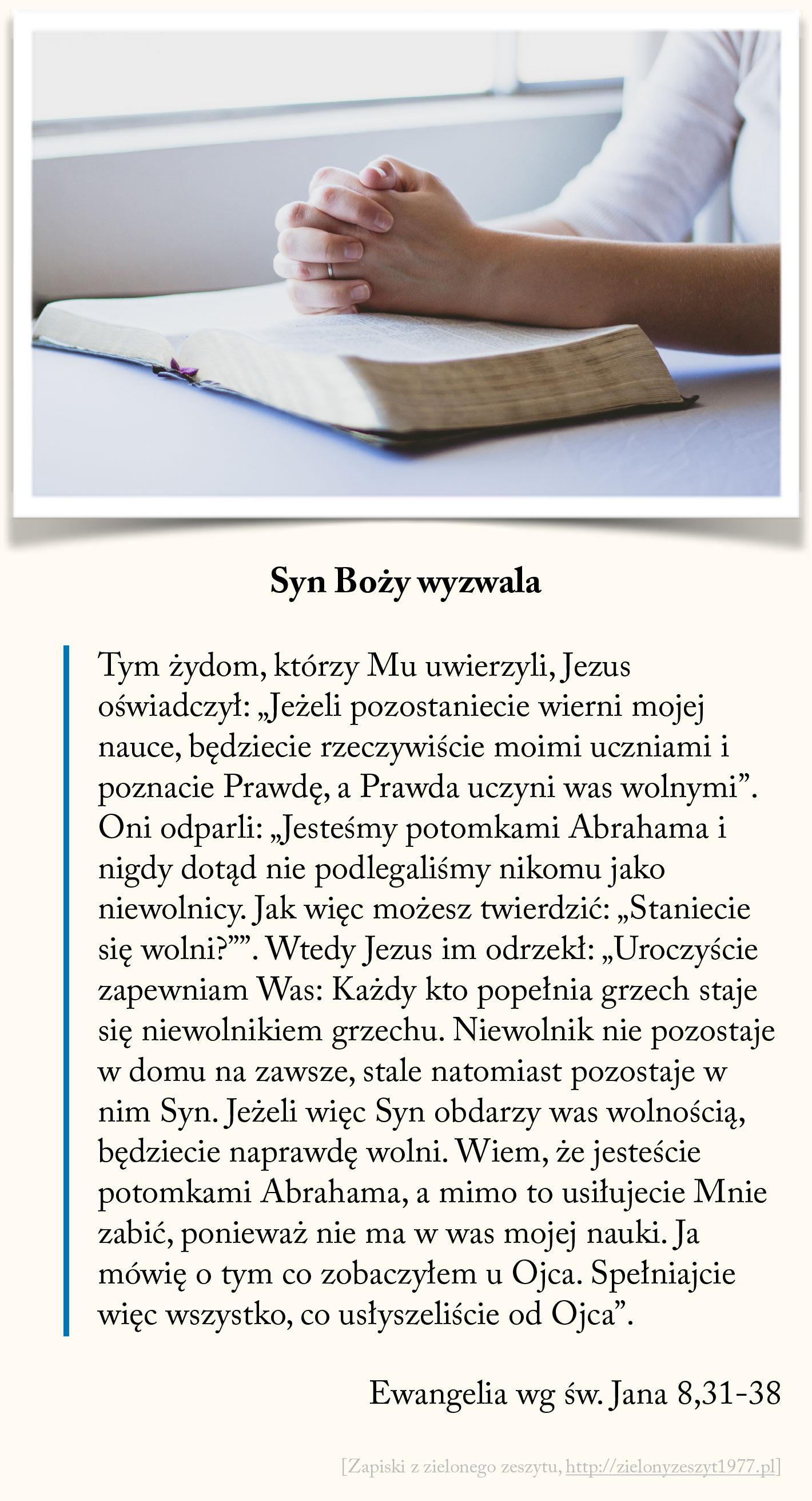 Syn Boży wyzwala, Ewangelia wg św. Jana