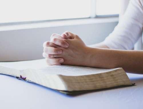 Źródło i skutki niewiary ludzi, Ewangelia wg św. Jana