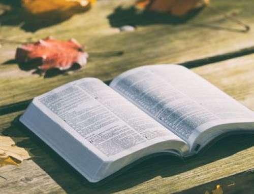 Miłosierny Ojcze otwórz nasze serca  na modlitwę którą chcesz nas  obudzić