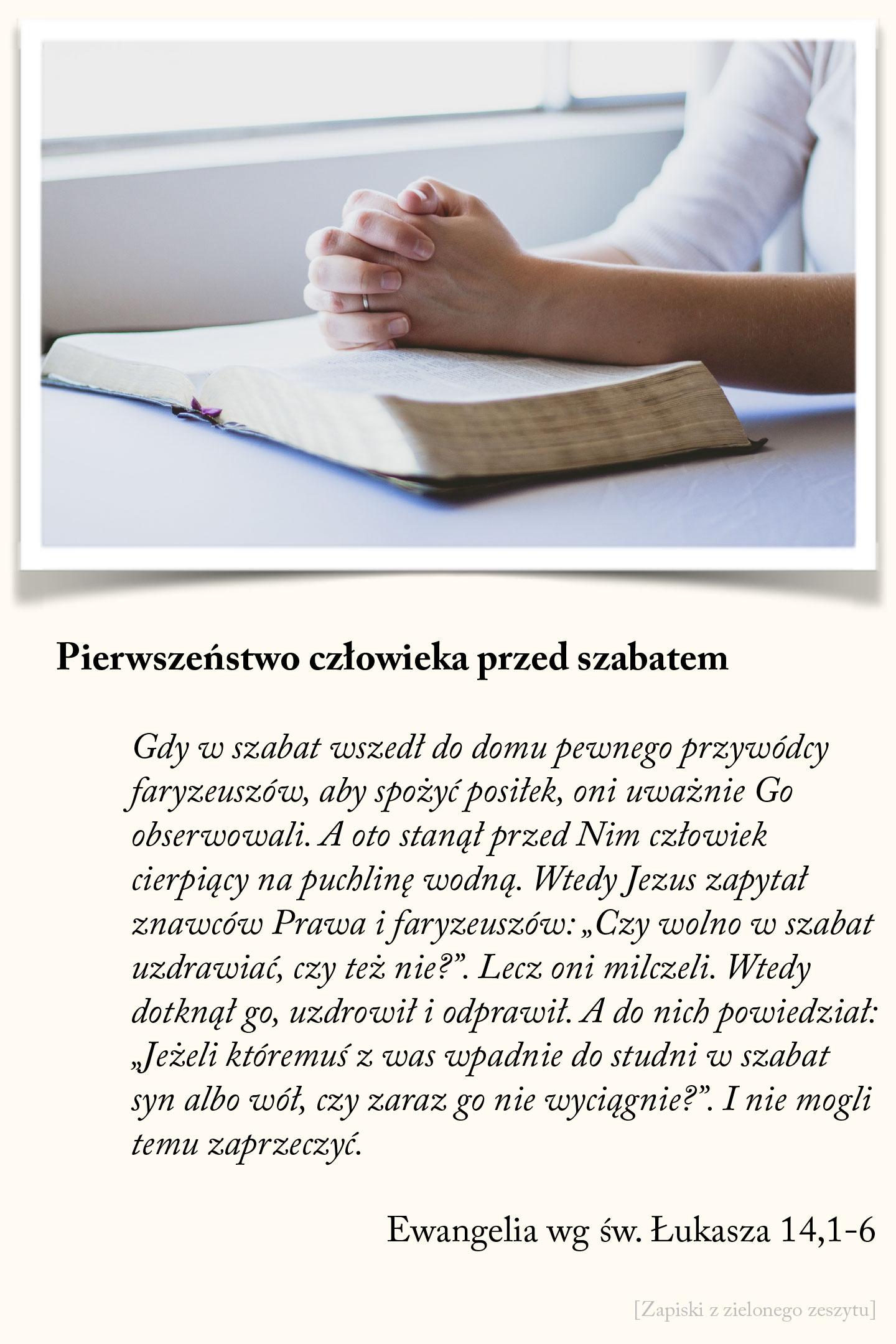 Pierwszeństwo człowieka przed szabatem, Ewangelia wg św. Łukasza