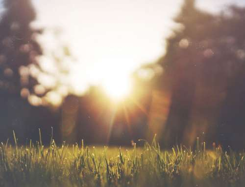 Modlitwa – Wszechmogący Panie daj nam mądrość by już teraz zapomnieć o sobie