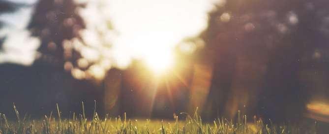 Modlitwa - Wszechmogący Panie daj nam mądrość by już teraz zapomnieć o sobie