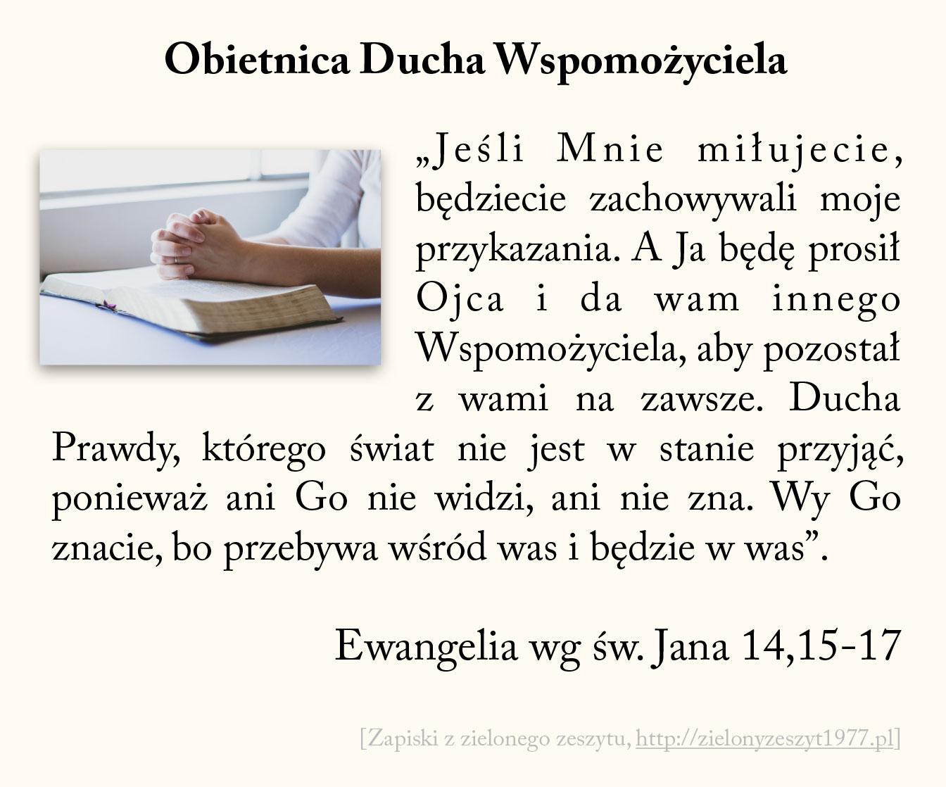 Obietnica Ducha Wspomożyciela, Ewangelia wg św. Jana