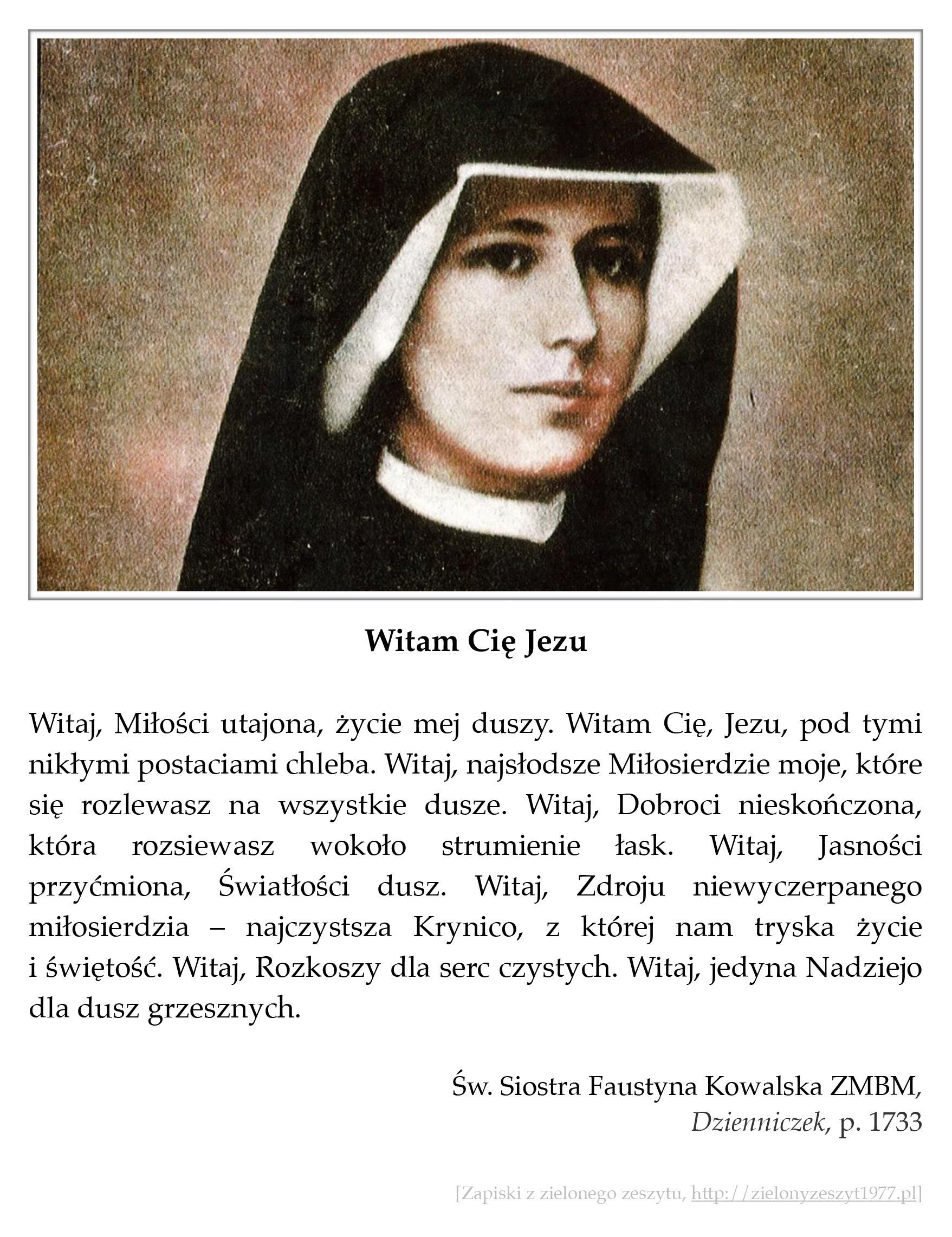 """Św. Siostra Faustyna Kowalska ZMBM, """"Dzienniczek"""", p. 1733 (Witam Cię Jezu)"""