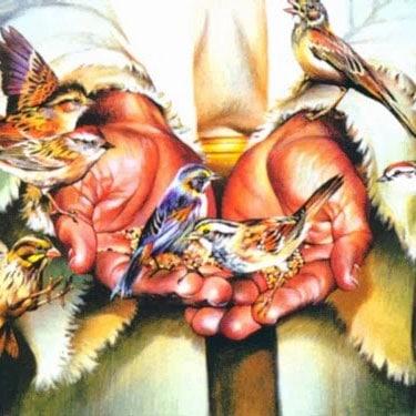 Mt 6, 24-34 - Ufność w Opatrzność Bożą